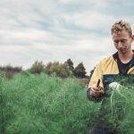 Workshops over tuinonderhoud